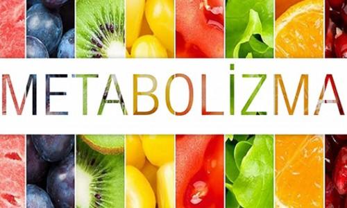 Metabolizma hızı ve yiyecekler