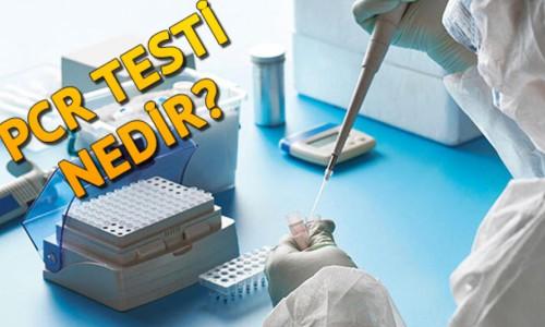 PCR testi nedir? Nasıl yapılır?